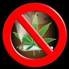nie+marihuana