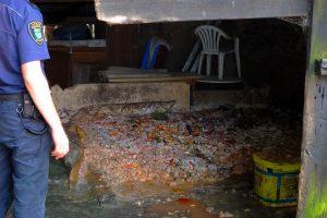 foto: SG - zgromadzone w budynku odpady (Dębogard)